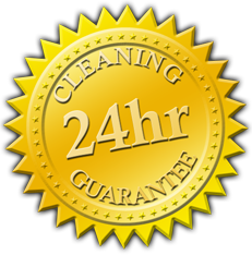 pic.seal.24_hour_cleaning_guarantee.256x256.service_solutions_center.free.cheap.inexpensive.quality.best.top.janitorial.air_duct_cleaning.maintenance
