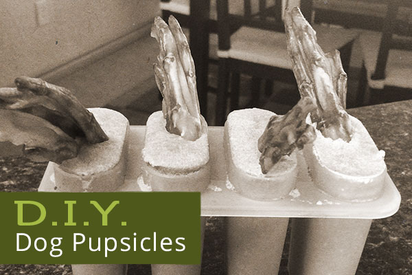 diy-dog-pupsicles